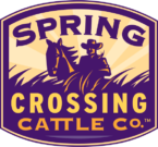 Spring Crossing Cattle Co. Logo